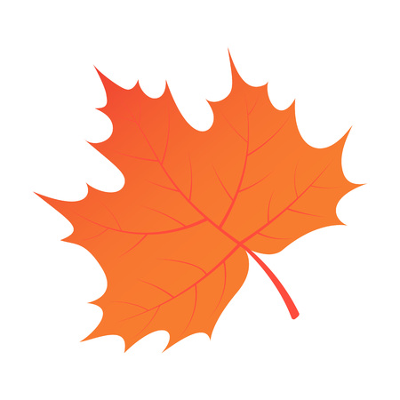 Brown autumn tree leaf icon. Isometric of brown autumn tree leaf vector icon for web design isolated on white background