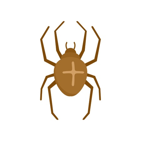 Cross spider icon. Flat illustration of cross spider icon for web isolated on white Stock Photo