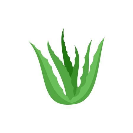 Green aloe vera icon, flat style Banco de Imagens