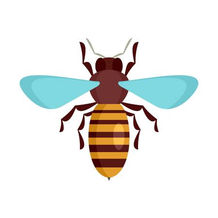 Bee insect icon, flat style