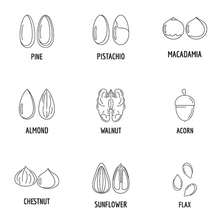 Walnut oil icons set. Outline set of 9 walnut oil icons for web isolated on white background