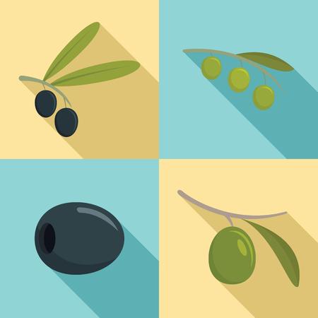 Festival olives oil icon set. Flat set of festival olives oil vector icons for web design Vettoriali