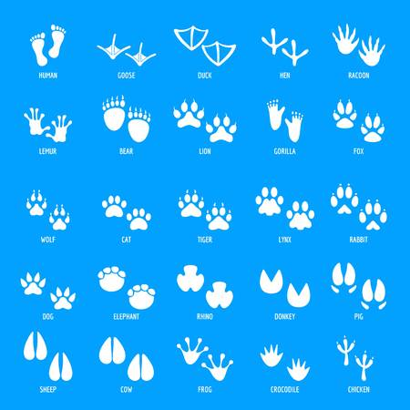 Animal footprint icons set. Simple illustration of 25 animal footprint vector icons for web Illustration