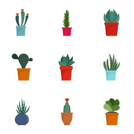 Succulent cactus icon set, flat style Illustration