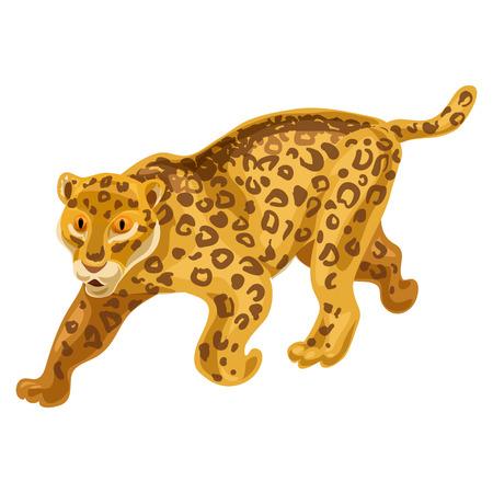 Cheetah icon, cartoon style