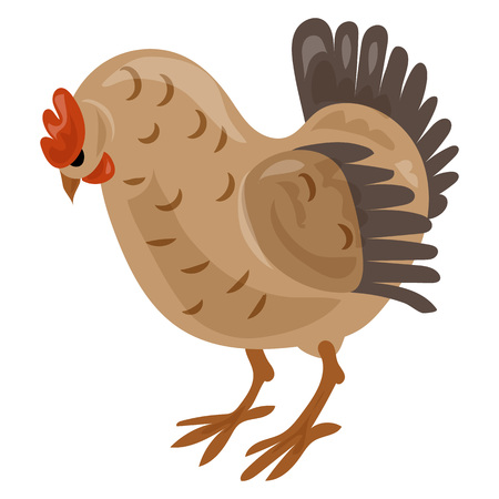 Chicken icon, cartoon style