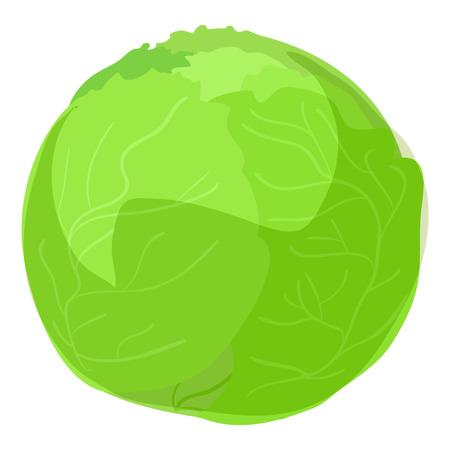 Green cabbage icon, cartoon style Stock Photo