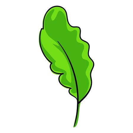 Salat leaf icon, cartoon style