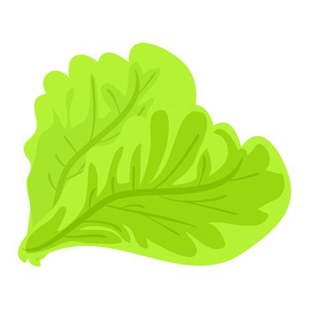 Green lettuce leaf icon, cartoon style