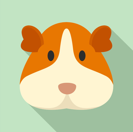 Cavy face icon. Flat illustration of cavy face vector icon for web design