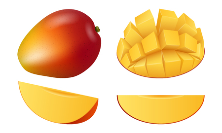 Conjunto de iconos de fruta de mango, estilo realista Ilustración de vector