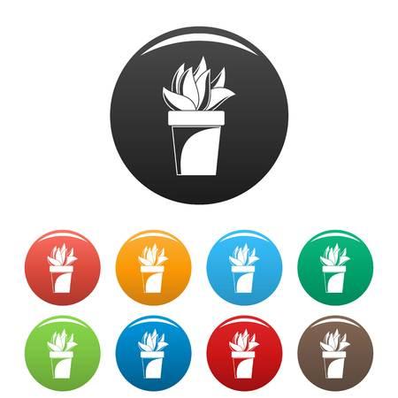 Cactus plant pot icons set color