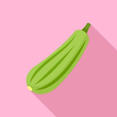 Bottle gourd icon. Flat illustration of bottle gourd vector icon for web design