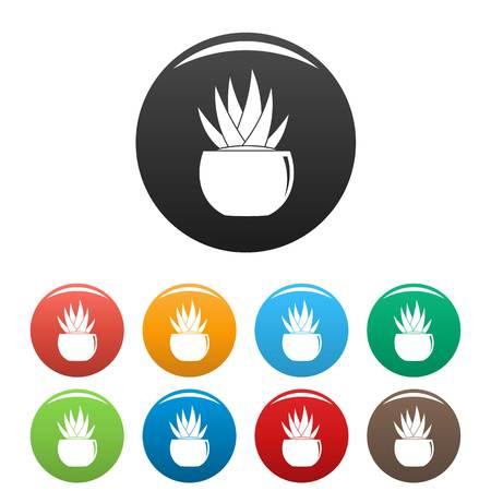 Round pot aloe icons set 9 color vector isolated on white for any design