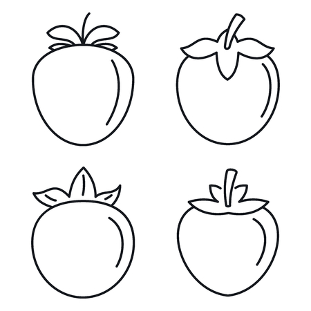 Persimmon fruit icon set, outline style