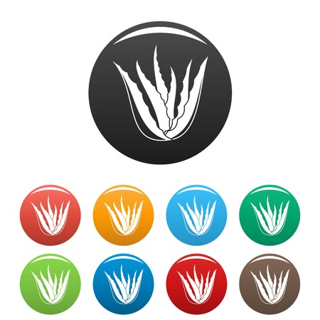 Aloe vera plant icons in a set of multicolors