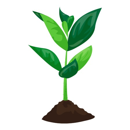 Soybean plant in ground icon, cartoon style Illustration