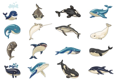 Whale icons set, cartoon style