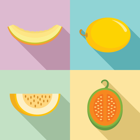 Melon icons set. Flat set of melon icons for web design Stock Photo