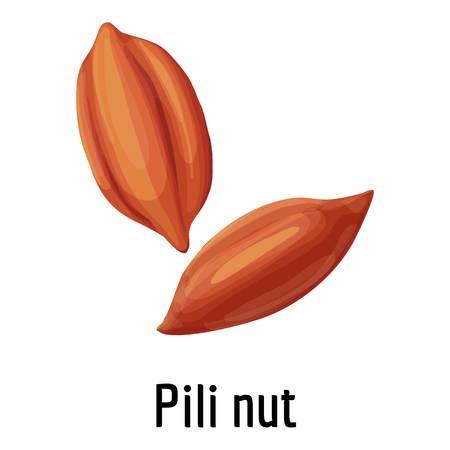 Pili nut icon, cartoon style
