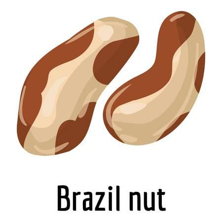 Brazil nut icon, cartoon style Stock Photo