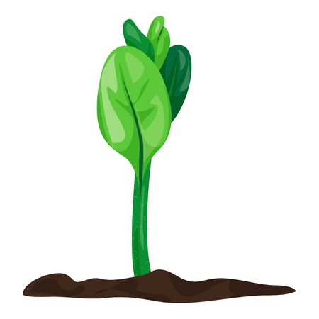 Grow soybean plant icon, cartoon style Banque d'images