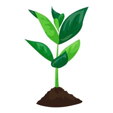 Soybean plant in ground icon, cartoon style Stock Photo