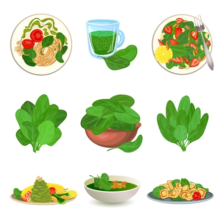 Spinach icons set, cartoon style