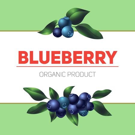 Blueberry concept background, cartoon style Stok Fotoğraf - 122629813