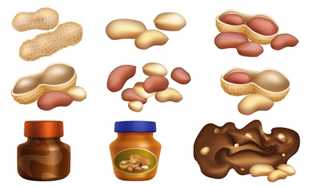 Peanut icons set. Cartoon set of peanut icons for web design