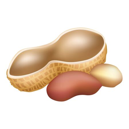 Shell peanut icon, cartoon style