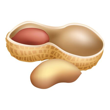 Half peanut icon, cartoon style