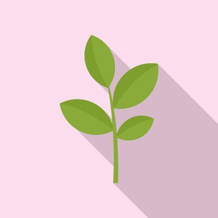 Matcha plant icon. Flat illustration of matcha plant icon for web design