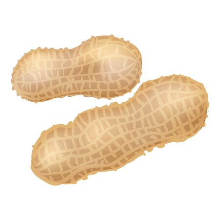 Peanut icon. Cartoon of peanut icon for web design isolated on white background Stock Photo