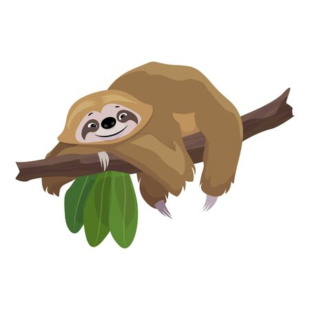 Sloth stay on tree icon. Cartoon of sloth stay on tree vector icon for web design isolated on white background Ilustração