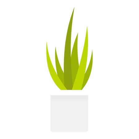 Succulent home plant icon, flat style