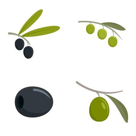 Festival olives oil icon set, flat style