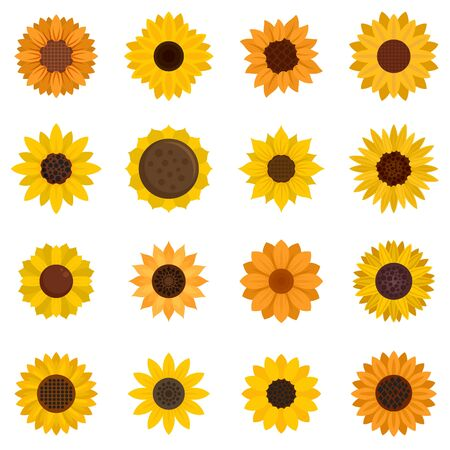 Sunflower icons set, flat style Çizim
