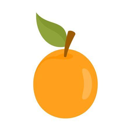 Fresh apricot icon, flat style