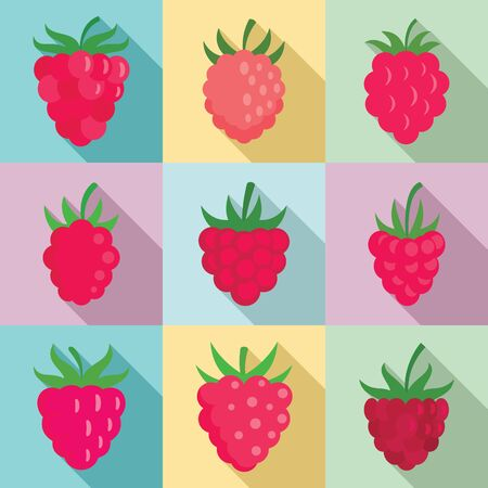 Raspberry icons set, flat style Stock Illustratie