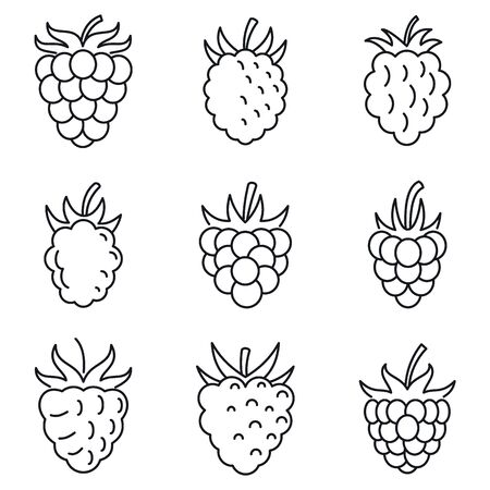 Fresh raspberry icons set, outline style