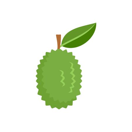 Whole raw durian icon, flat style