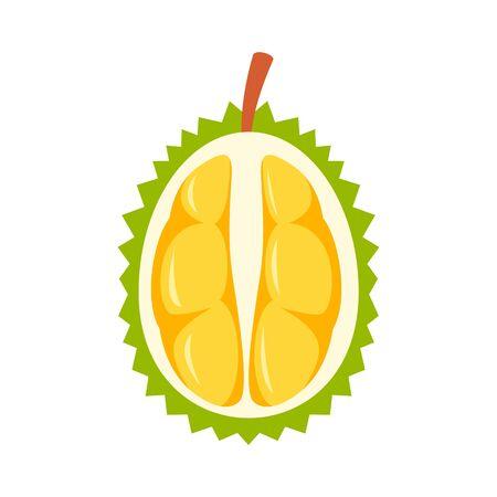 Half fresh durian icon, flat style