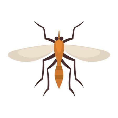 Brazil mosquito icon. Flat illustration of brazil mosquito vector icon for web design