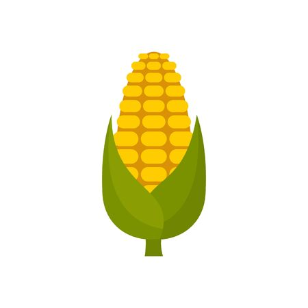Natural maize icon, flat style