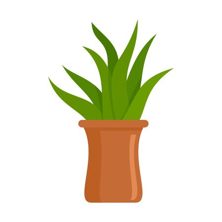 Succulent pot icon. Flat illustration of succulent pot vector icon for web design