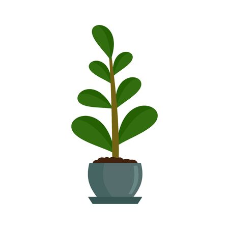 Jungle houseplant icon. Flat illustration of jungle houseplant vector icon for web design