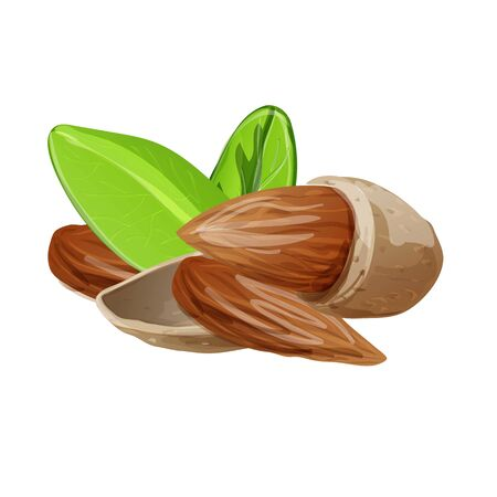 Raw almonds icon, cartoon style Foto de archivo - 133489701