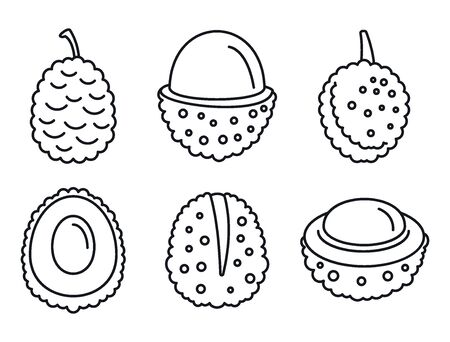Asian lychees icons set, outline style