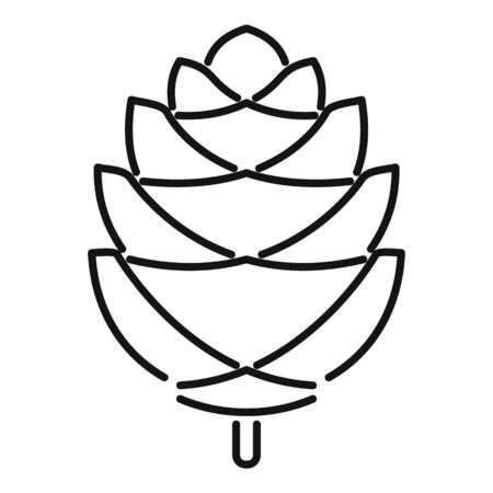 Branch pine cone icon. Outline branch pine cone vector icon for web design isolated on white background